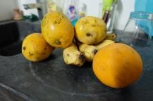 Obst ist ganz unterschiedlich im Preis. Am teuersten sind Aepfel. Mangos und Bananen bekommst Du sehr preiswert.